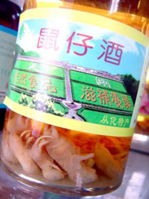 Bottle of Chinese baby mice wine.