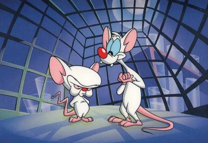 We did what the Pinky and the Brain couldn't accomplish in 65 episodes.