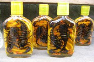 scorpion-liquor